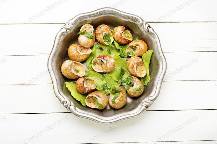 Bourgogne escargot snails