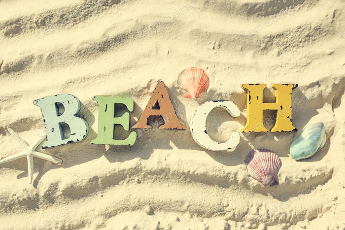 Beach Summer Holiday Vacation Sand Seashell Relaxation Concept