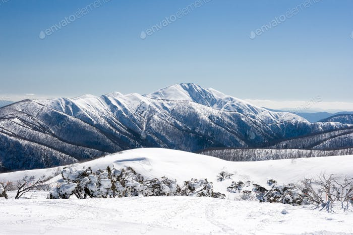 Mt Hotham in Winter