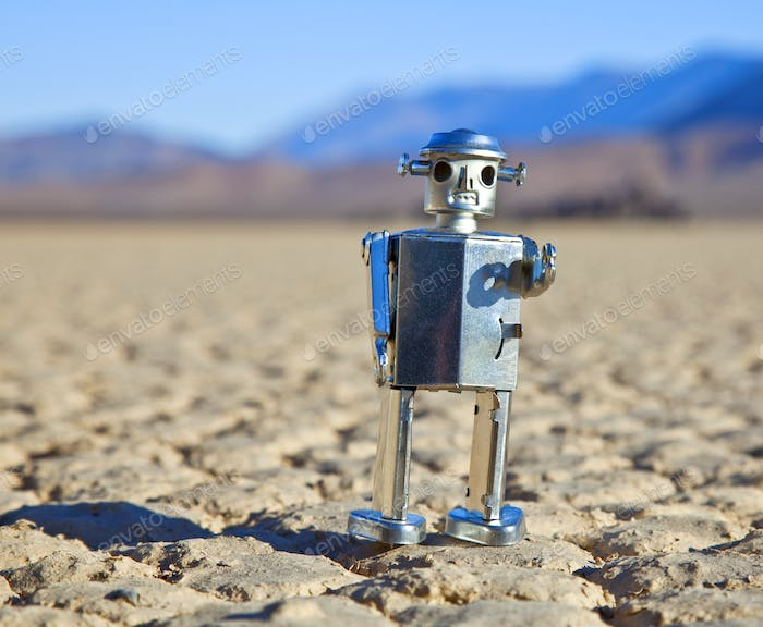 Toy Robot in Desert