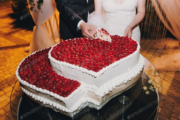 Gorgeous bride and stylish groom cutting together delicious wedding cake