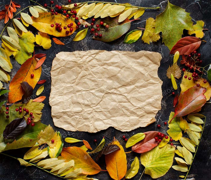 Autumn  leaves and paper on a dark background