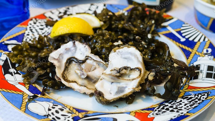 fresh oysters on plate in local fish restaurant