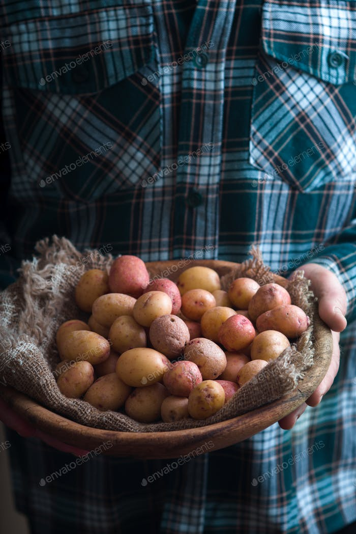 Wooden plate with raw potatoes in the hands