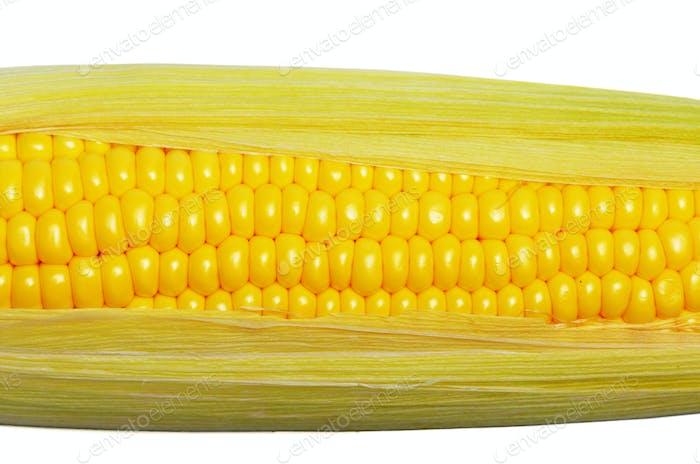 Reife frische Bio-Maiskolben mit Blatt Nahaufnahme Hintergrund
