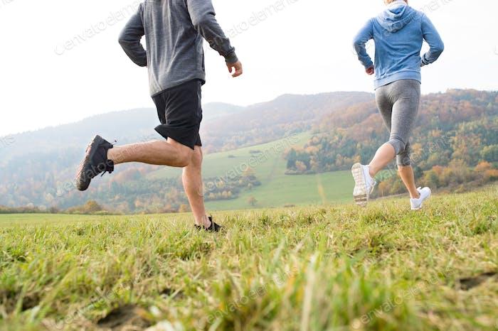 Legs of unrecognizable couple running in autumn nature