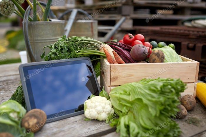 Nahaufnahme von Gemüse mit Tablet-PC auf dem Bauernhof