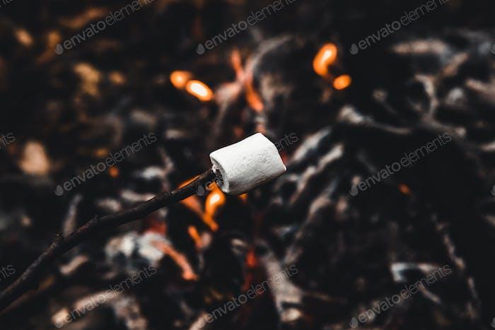 Los malvaviscos se asan en el fuego del campamento y se hacen muy bien dorados