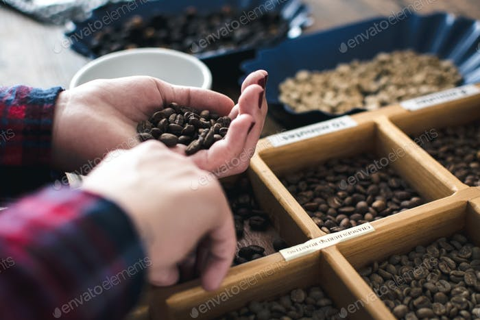 Different types of roasted coffee beans