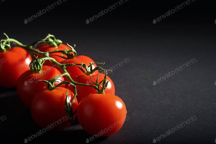 Branch of red organic tomatoes on a black background.