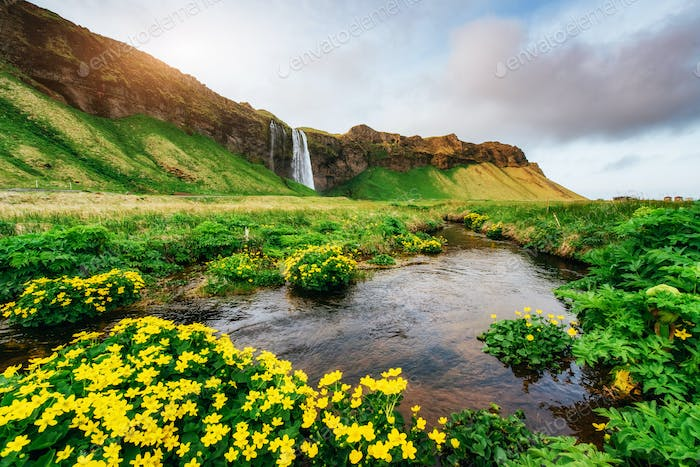 Seljalandfoss waterfall at sunset. Bridge over the river. Fantastic nature. Iceland