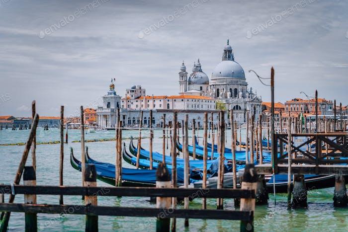 Venedig Blick auf Santa Maria della Salute Basilika und Gondeln auf dem Canal Grande. Berühmte Touristen