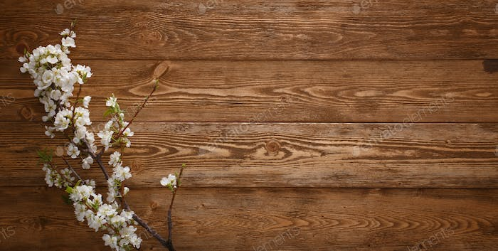 Summer Flowers on wood background with copyspace