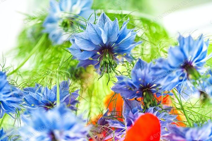 Cornflower in the bouquet