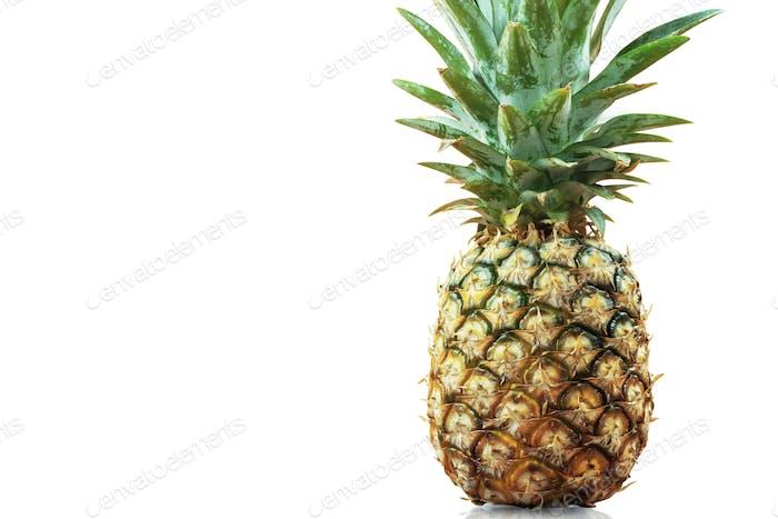 Pineapple ripe on white background