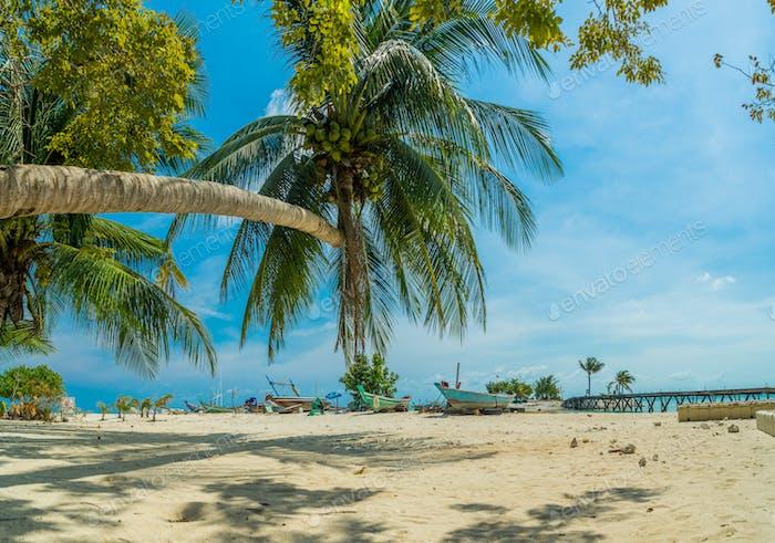 koh Samui beach and tropical sea