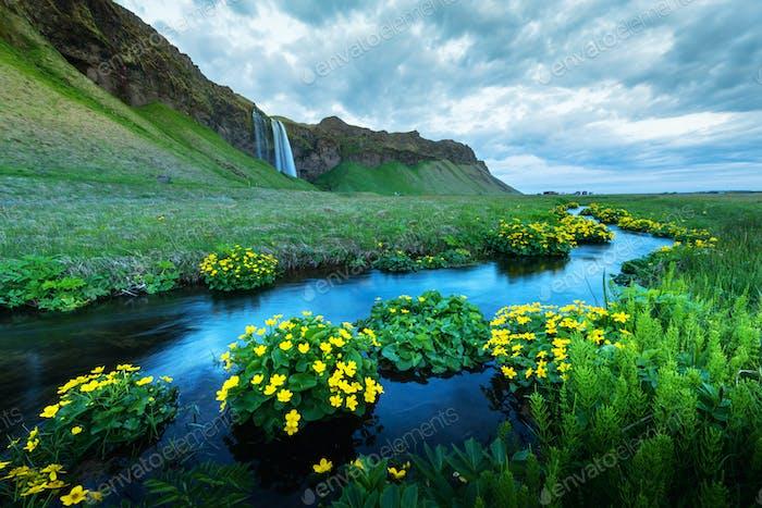Amanecer en la cascada Seljalandfoss