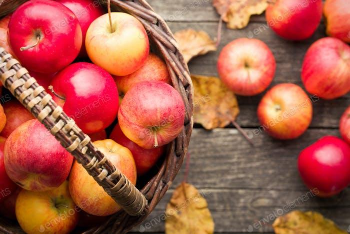 manzanas de otoño en la cesta