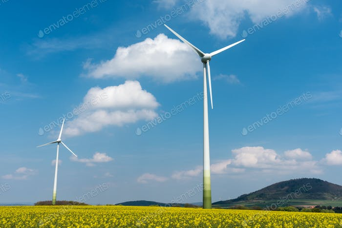Windmills in a rapeseed field