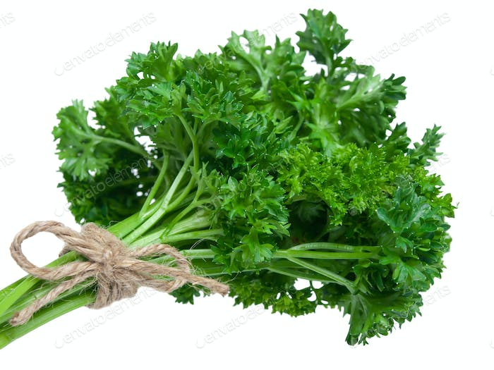Fresh parsley bouquet
