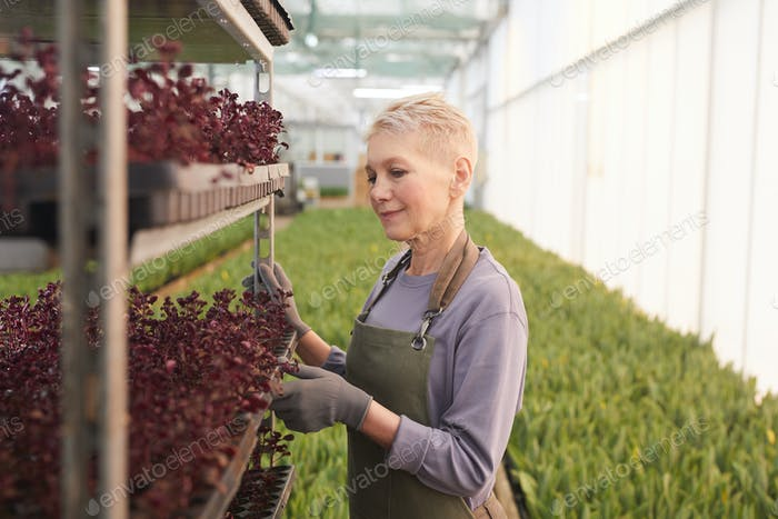 Woman working with plants