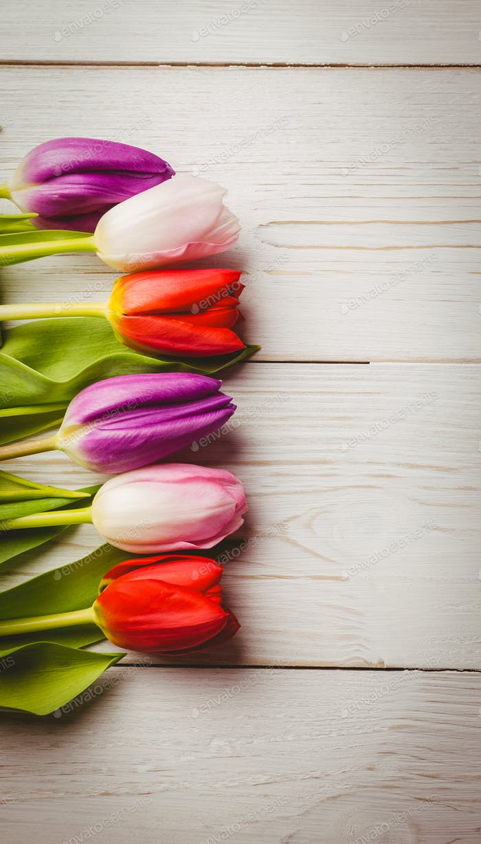 Overhead of tulips on wooden table