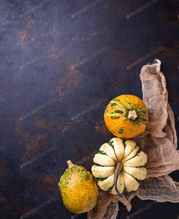 Decorative pumpkins on rusty background