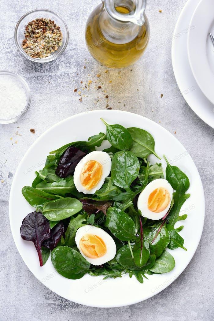 Europäische grüne Mischung Salat