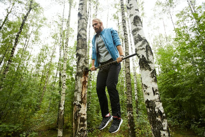Exercising in the forest