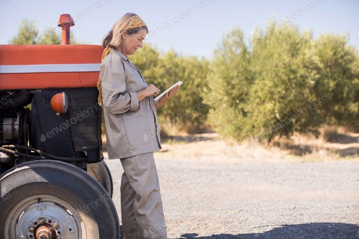 Woman using digital tablet in olive farm