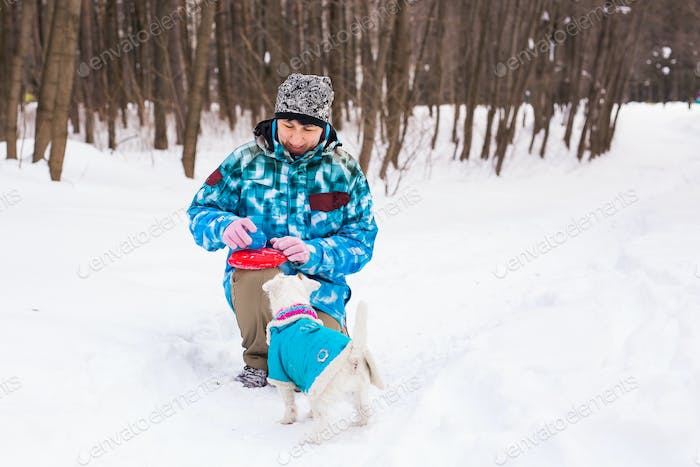 Jack Russell Terrier dog with owner woman playing in the winter outdoors
