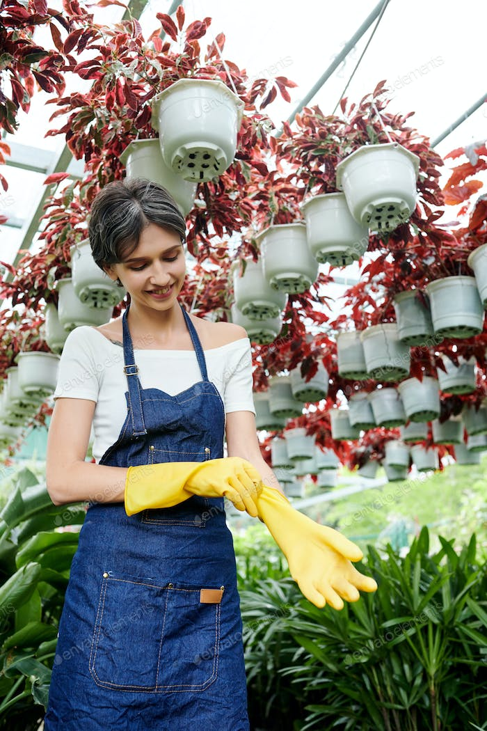 Female gardener putting on rubber gloves