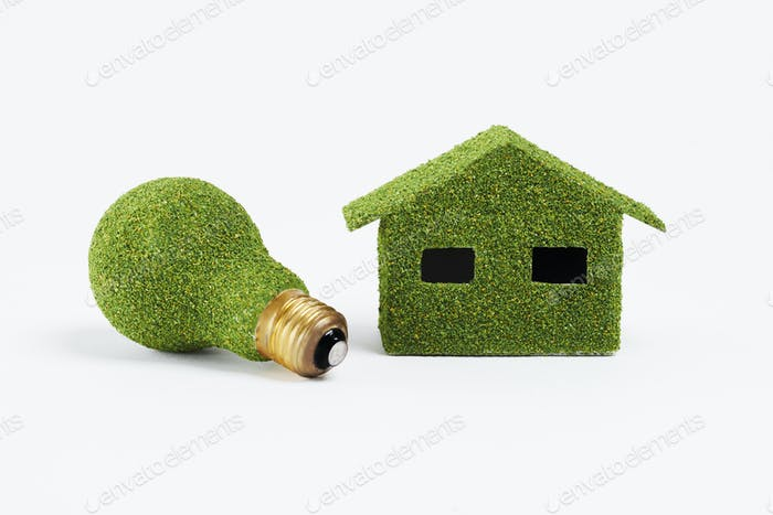 Concept of eco friendly home and energy efficient lightbulb