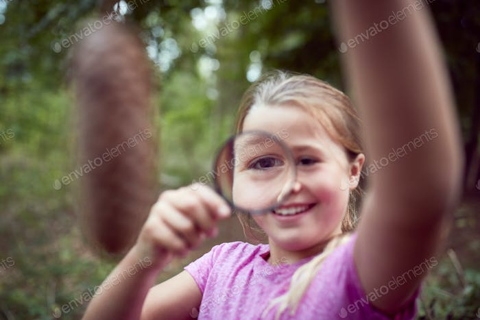 Girl At Outdoor Activity Camp Studying Pine Cone With Magnifying Glass