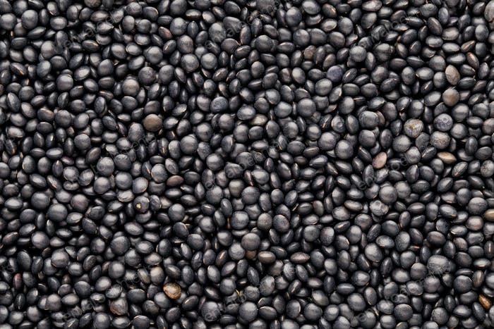 Food and cookery background of healthy dried  black lentils.