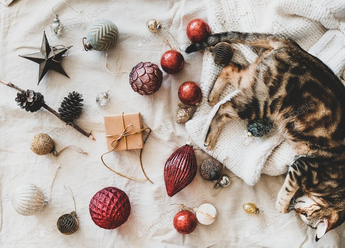 Weihnachten festliche Dekoration Spielzeug und Haus Katze liegend auf Pullover