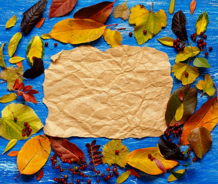 Autumn  leaves and paper on a blue  background