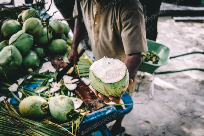 Man handing in a green coconut. Traditional local agriculture.