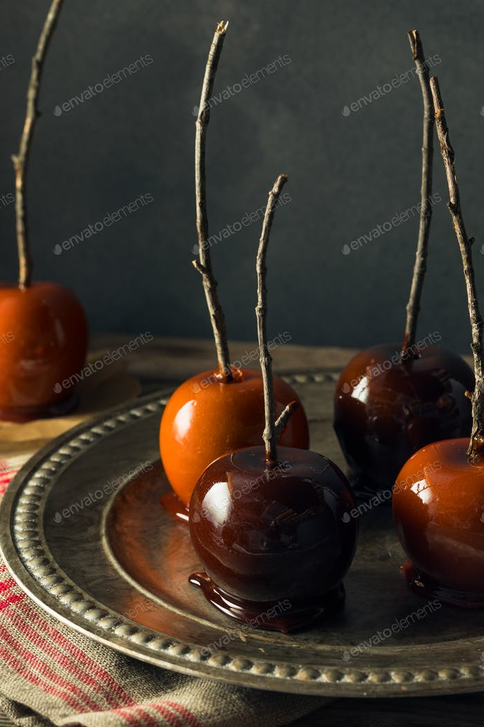 Gourmet Sweet Fancy Candy Apples