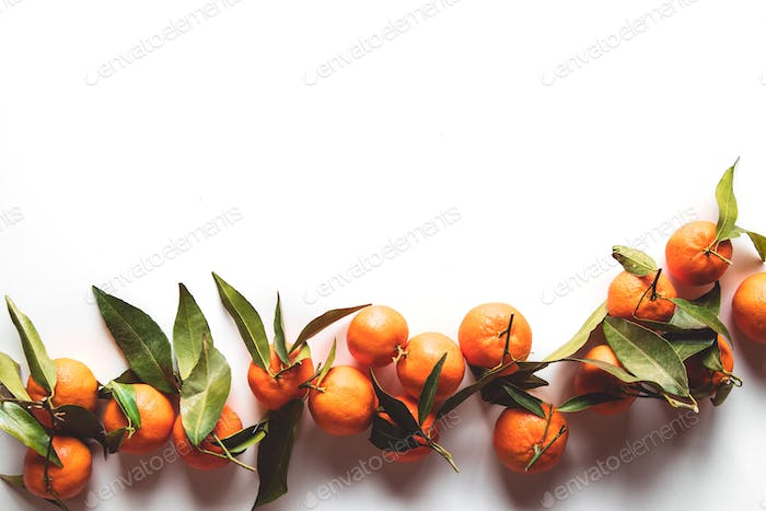 Oranges fruits composition with green leaves on white wooden background, top view