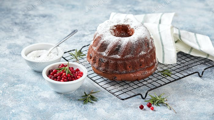 Chocolate cake sprinkled with powdered sugar on a metal wire rack, powdered sugar and cranberries