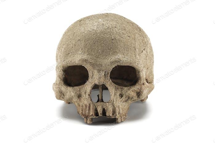 Halloween menschlichen Schädel isoliert auf weißem Hintergrund