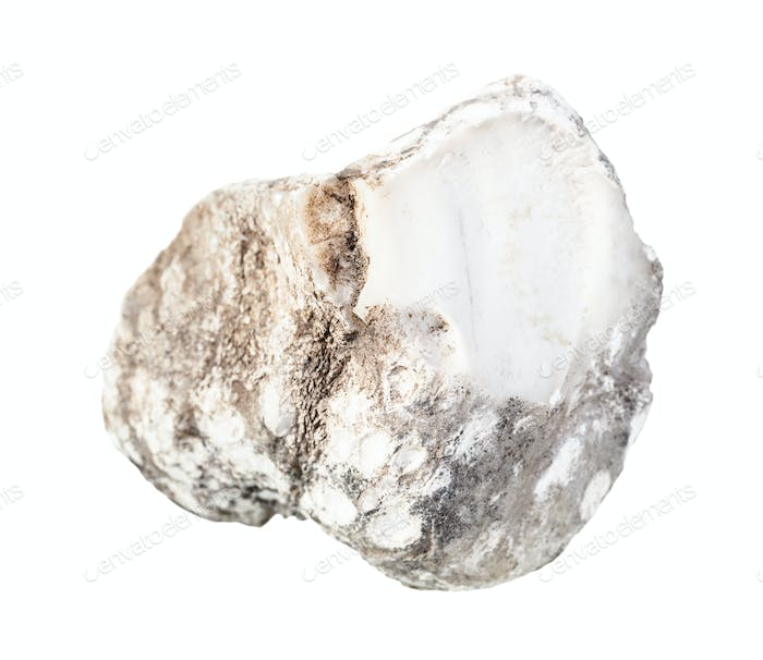 unpolished Cacholong rock isolated on white