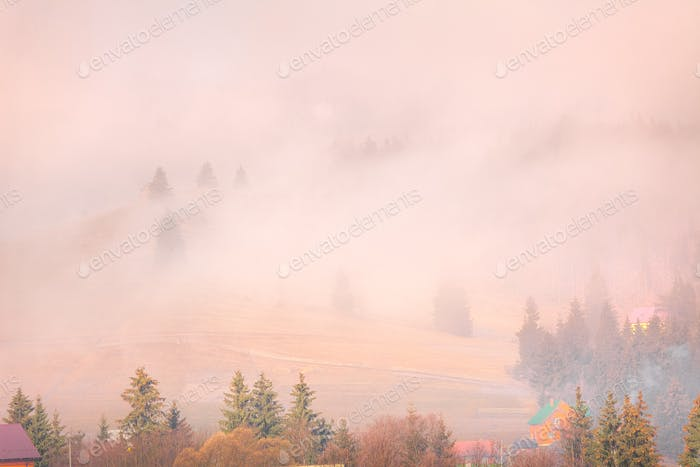 Foggy autumn landscape