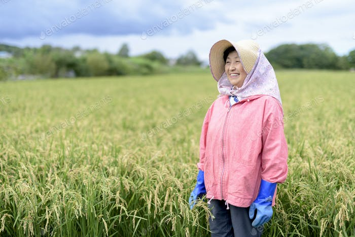 Smiling woman wearing straw hat and pink jacket and blue rubber gloves standing in a rice field.