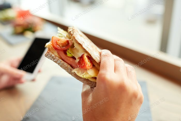 hand with salmon panini sandwich at restaurant