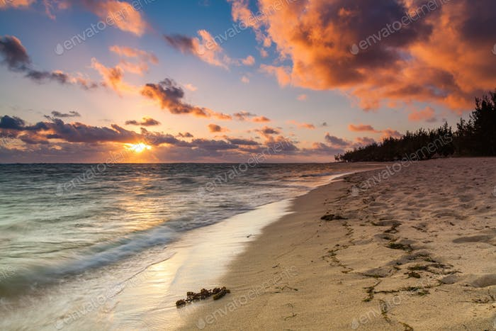 Thumbnail for Beautiful sunset on the beach in a tropical resort at Reunion island.