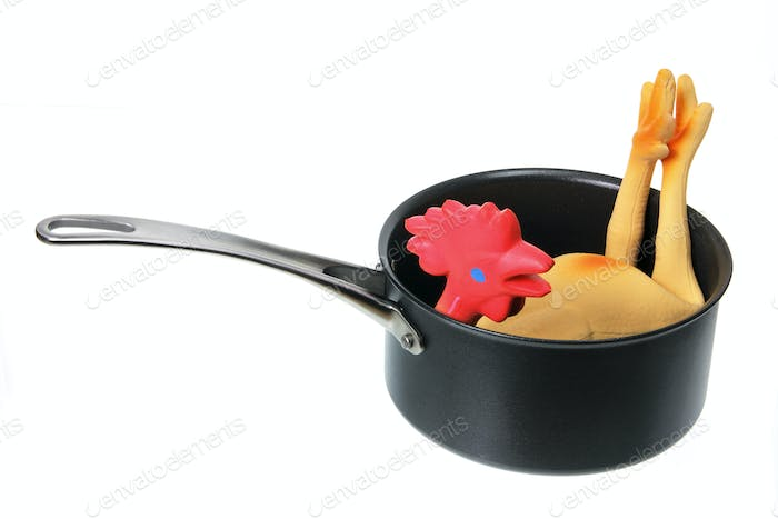 Toy Rubber Chicken in Pot