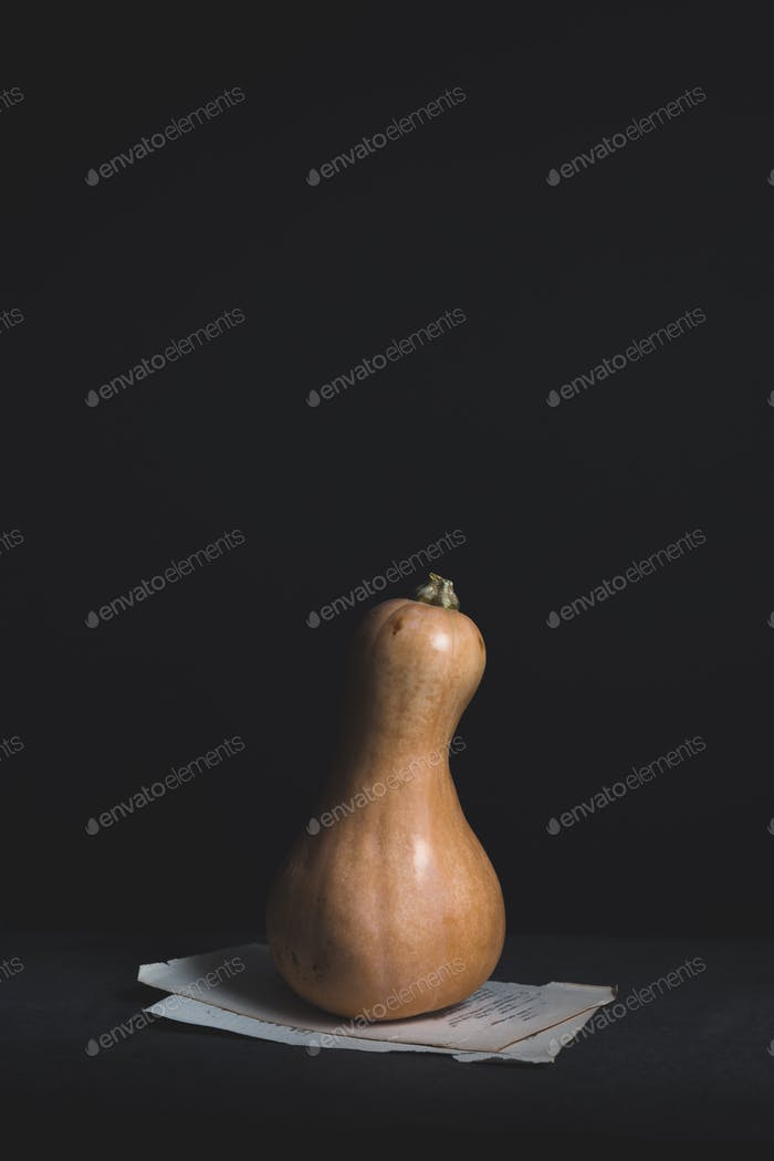 Butternut Squash Isolated against Black Background