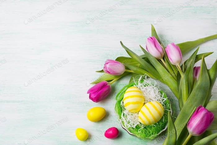 Easter yellow eggs and pink tulips, copy space.